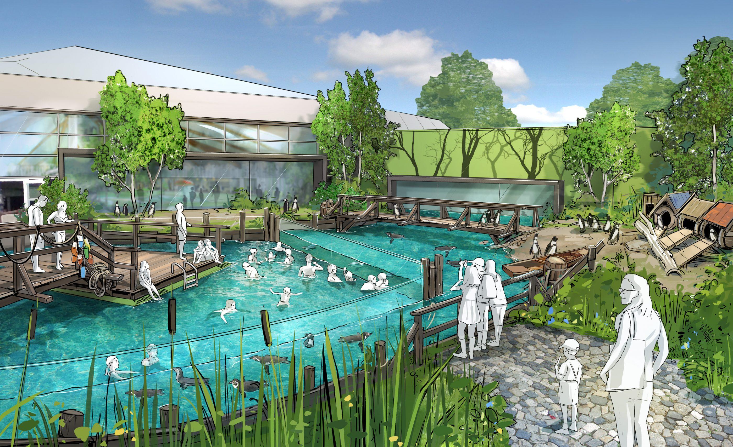 Das Pinguinbecken im Spreewelten Bad