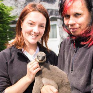 Werde jetzt Tierpfleger im Spreewelten-Teams