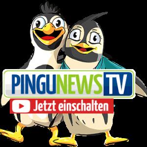 PINGUNEWS TV – Folge 3: Das Wettrutschen