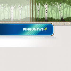 Lerne das neue PINGUNEWS TV-Team kennen
